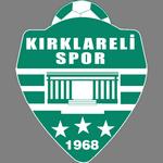 Kırklarelispor overall standings
