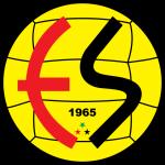 Eskişehirspor overall standings