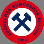 Zonguldak Kömürspor overall standings